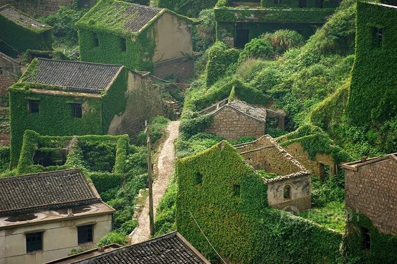 Жадный лес проглотил заброшенный китайский городок(4 фото)