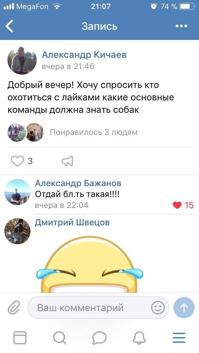 Комментарии из соцсетей (36 фото)