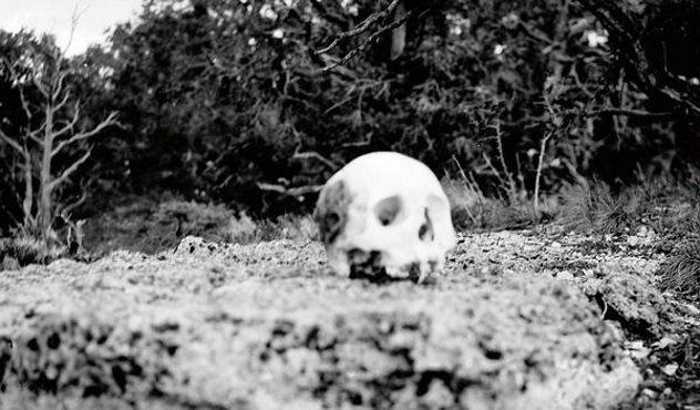 «Не смотри в бездну». Ужасные факты о Большом Каньоне (5 фото)