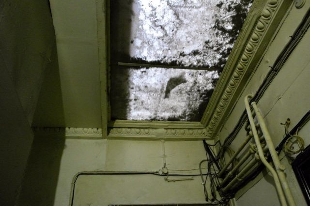 Парадные старых домов Санкт-Петербурга (31 фото)