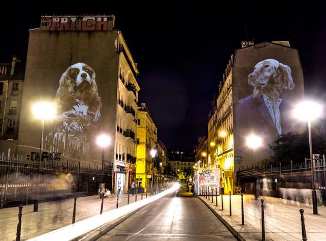 Арт-сафари на стенах Парижа (13 фото)