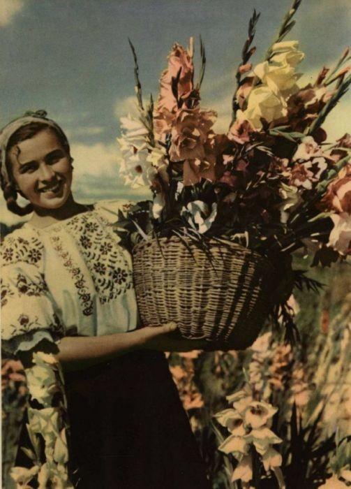 Советские девушки на страницах старых журналов (34 фото)