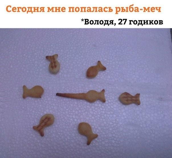 Очередная порция картинок с подписями(22 фото)