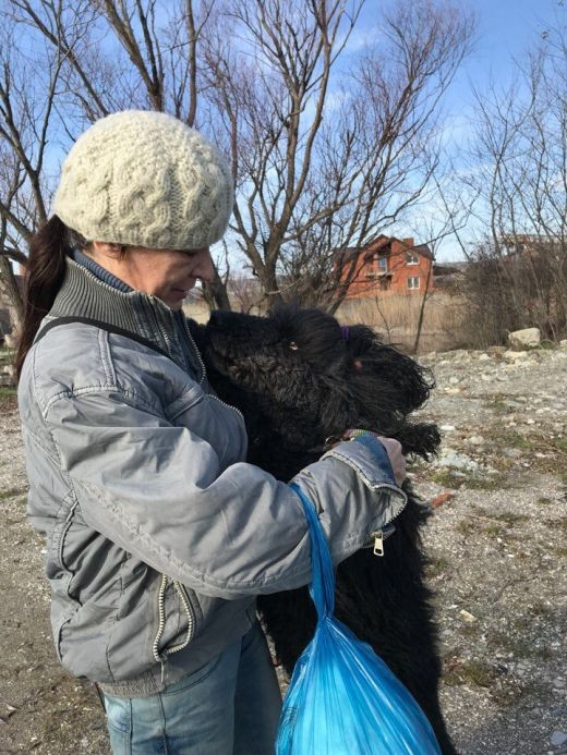 В Новороссийске пес два месяца ждал хозяйку из больницы (3 фото)