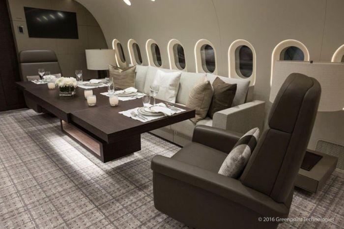 Boeing 787-8 Dreamliner - один из самых роскошных самолетов в мире (10 фото)