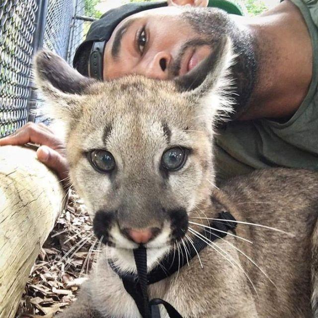 «Король джунглей» Майк Холстон, предпочитающий компанию животных (27 фото)