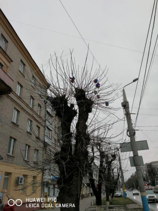 Бежицкий район Брянска украсили к Новому году (5 фото)