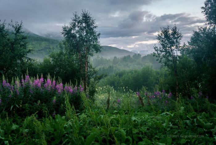 Удивительные просторы Норвегии (29 фото)