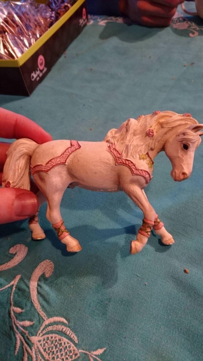Девочка попросила у родителей лошадку, а получила коня (2 фото)