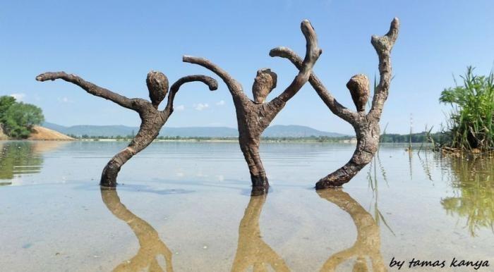 Скульптуры из коряг, выброшенных на берег (17 фото )