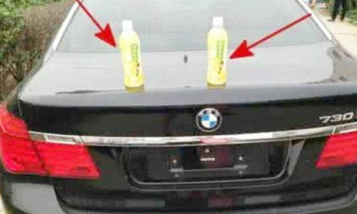 Простой способ снять студентку - выставить на капот авто бутылку с водой (8 фото)