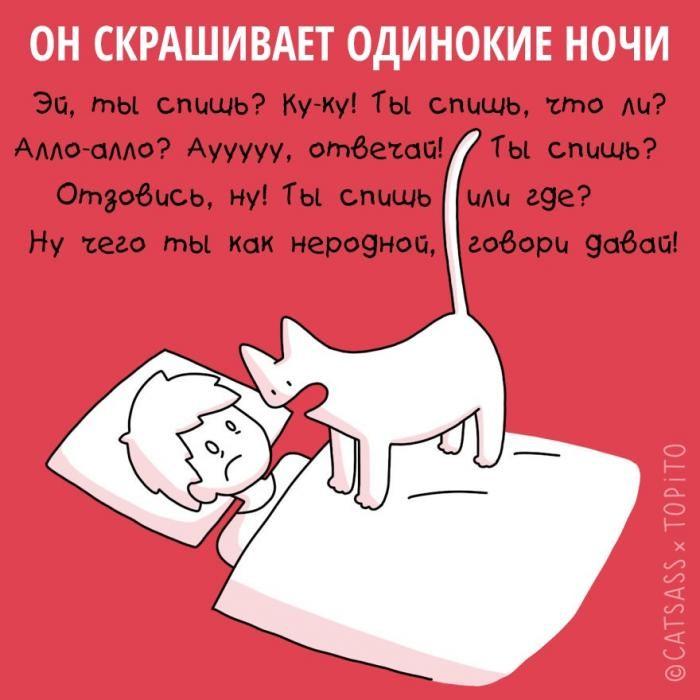 Примеры того, как кот помогает пережить расставание (10 фото)