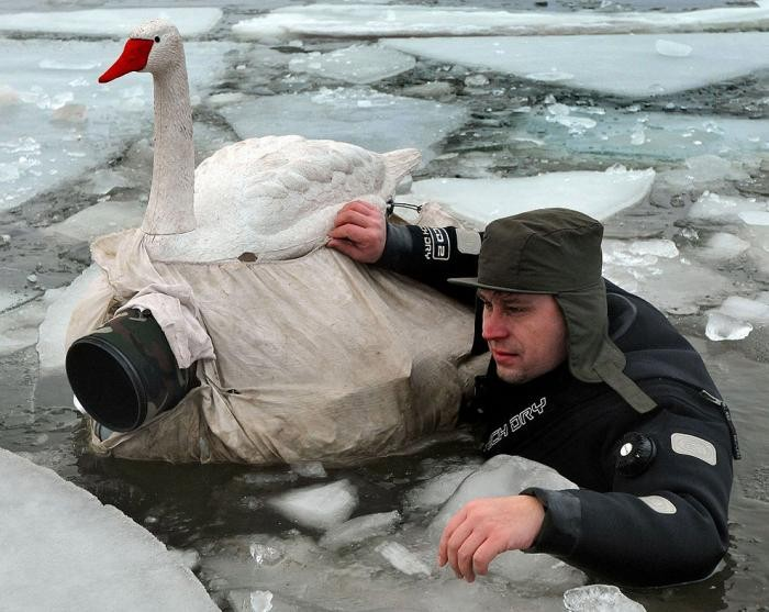 В контакте с животными (16 фото)