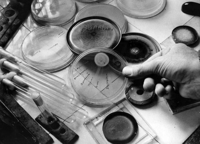 Случайные научные открытия (11 фото)