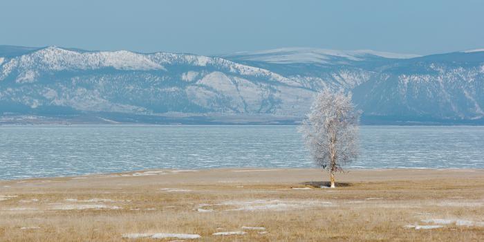 Зимний Байкал: мир льда и ветра (11 фото)