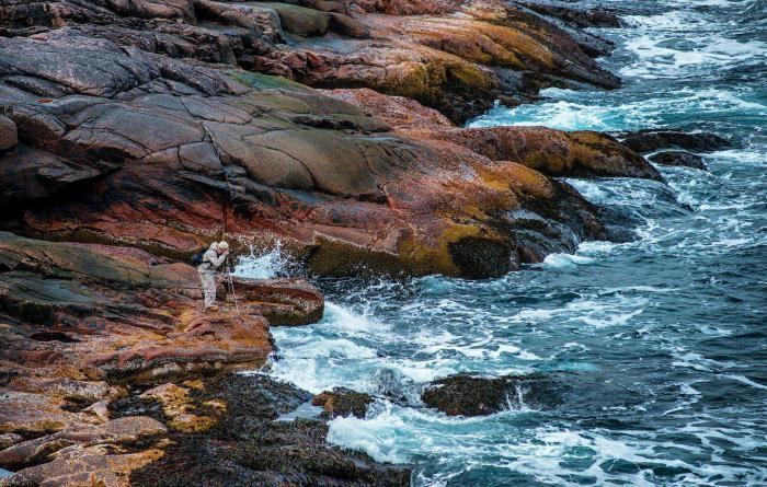 Суровое северное побережье Баренцева моря (16 фото)