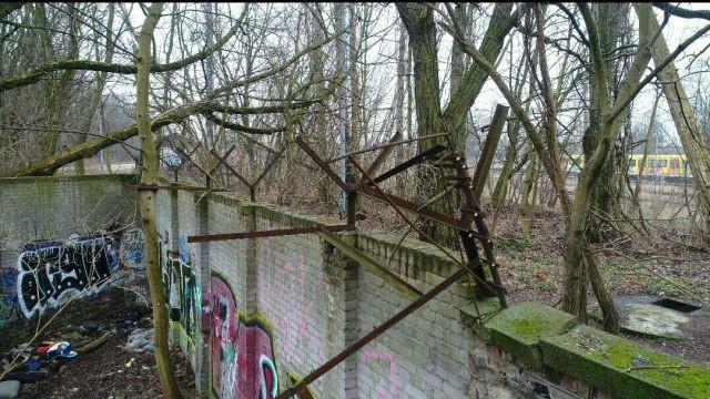 В лесу обнаружили уцелевший фрагмент Берлинской стены (7 фото)