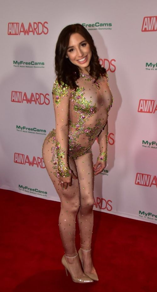 Порно-оскар 2018 (AVN Awards 2018) (18 фото)