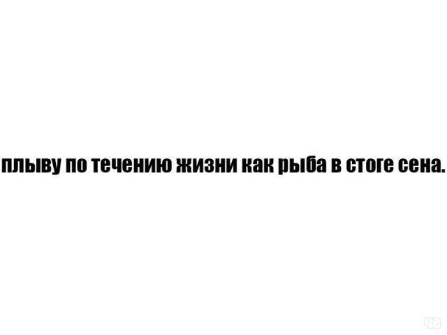 Подборка прикольных фотографий (71 фото)