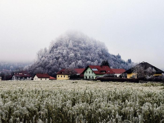 Лучшие фотографии от National Geographic (16 фото)