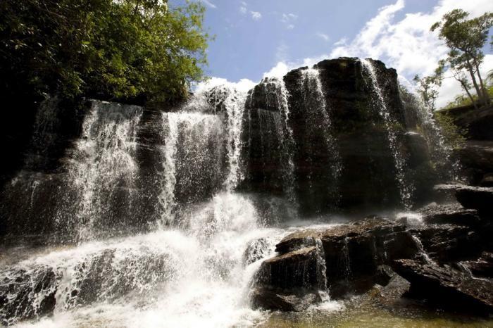 Каньо-Кристалес — самая красивая река на Земле (38 фото)