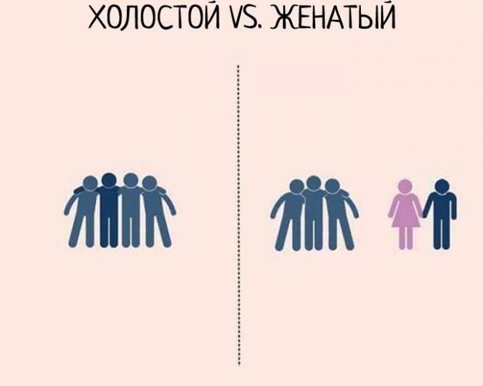 Мужчины бывают лишь двух видов - холостяк и женатик (7 фото)