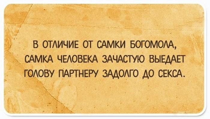 Юмористические открытки с чисто женским взглядом на жизнь (10 фото)