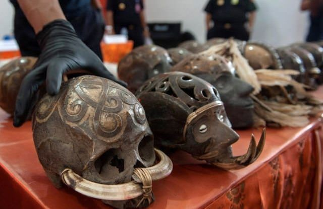 Человеческий череп как предмет контрабанды (3 фото)