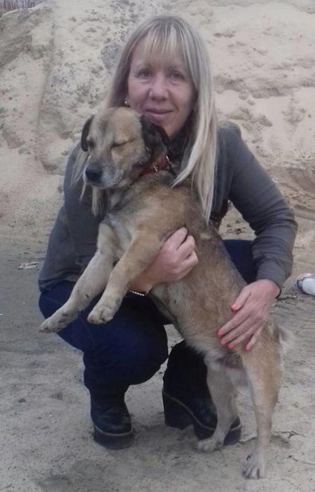 Собаке полностью облитой смолой удалось выжить (8 фото)