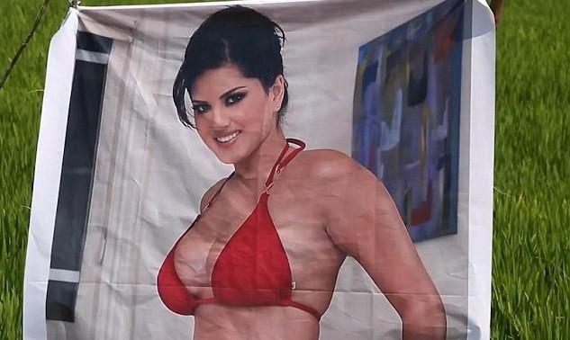 Плакат с порнозвездой для защиты урожая от сглаза (4 фото)