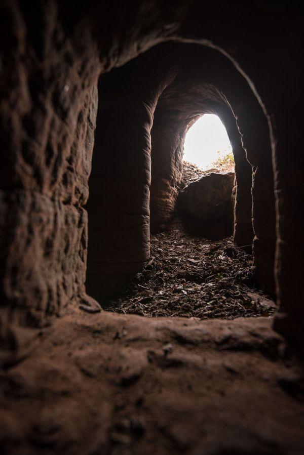 Что скрывает кроличья нора (9 фото)
