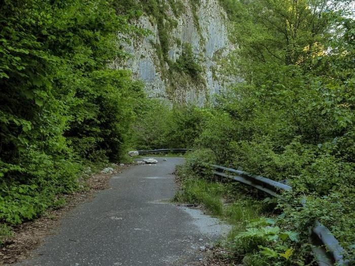 Заброшенная дорога в Сочи (20 фото)