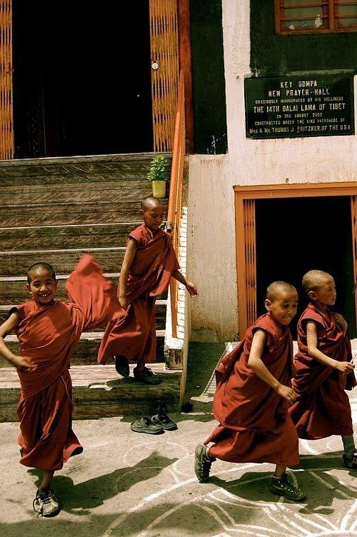 Буддийский храм Ки Гомпа, Индия (30 фото)