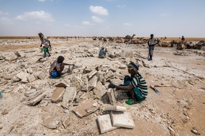 Работа в Эфиопии: сколько платят за добычу соли? (9 фото)
