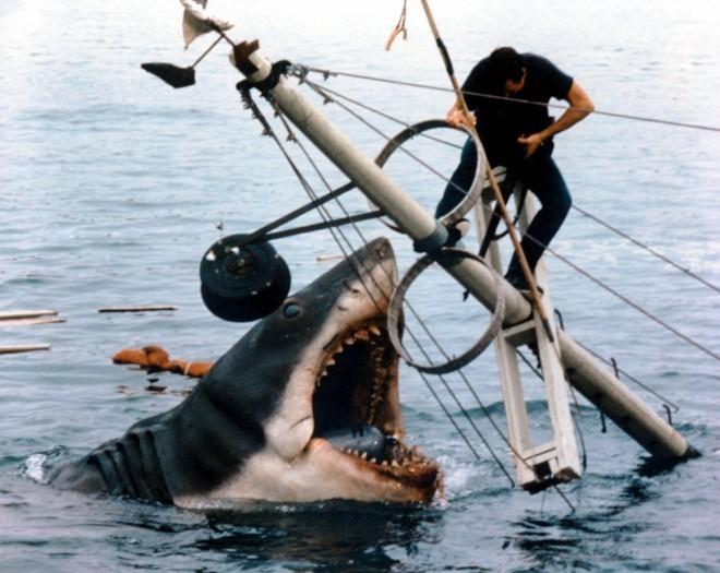 История акулы, державшая в страхе всё Атлантическое побережье (7 фото)