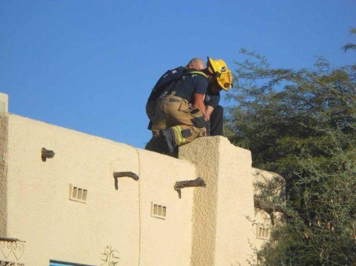 Попытка залезть в дом через дымоход закончилась провалом (4 фото)