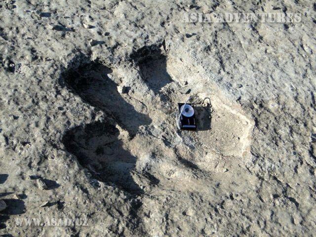 Плато динозавров в Туркменистане (6 фото)