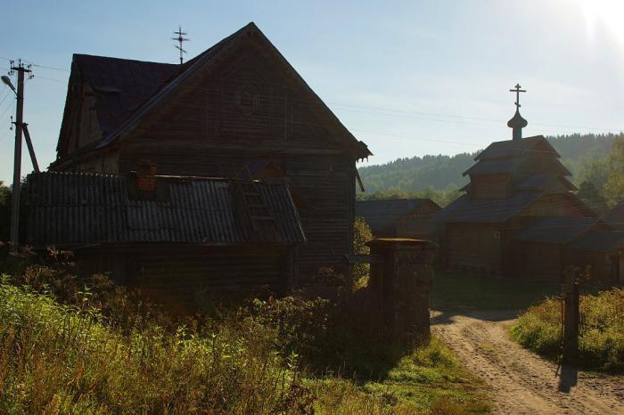 Вепсский лес (22 фото)