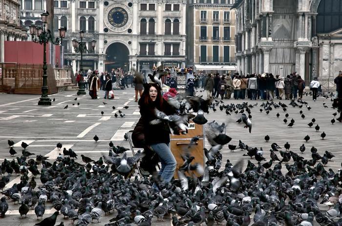 Чего не стоит делать в Италии (16 фото)
