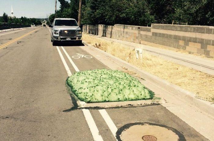 Жителей американского города напугала зелёная жижа (6 фото)