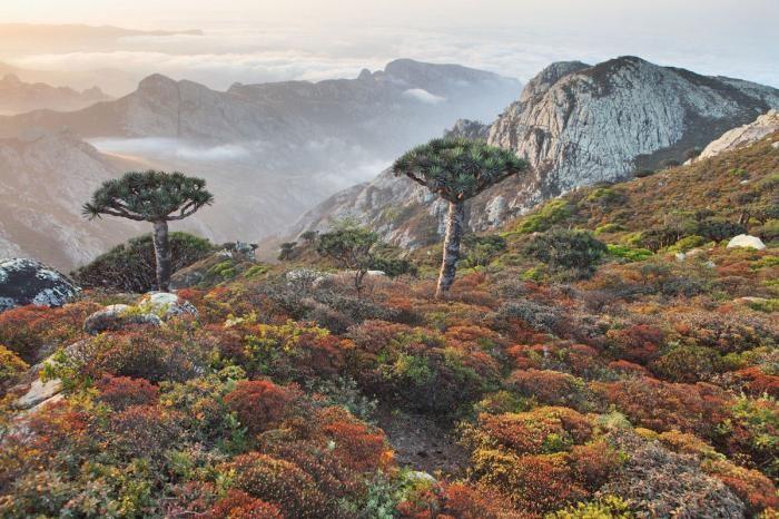 Запредельно красивые места Земли (20 фото)
