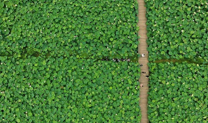 Завораживающая красота Китая: взгляд с высоты (35 фото)