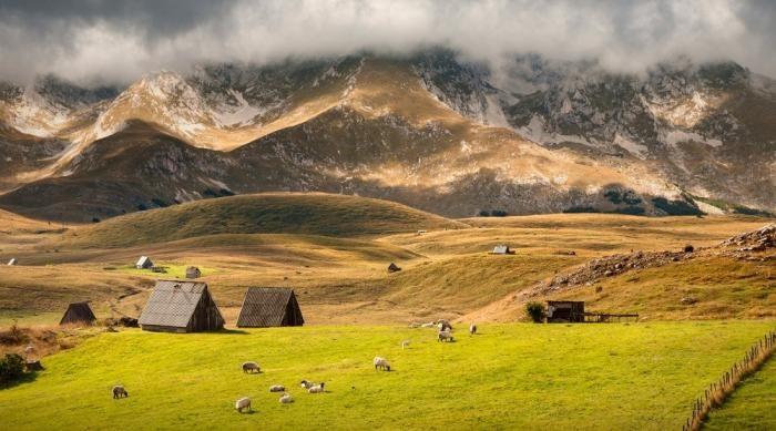 За что любят Черногорию (18 фото)