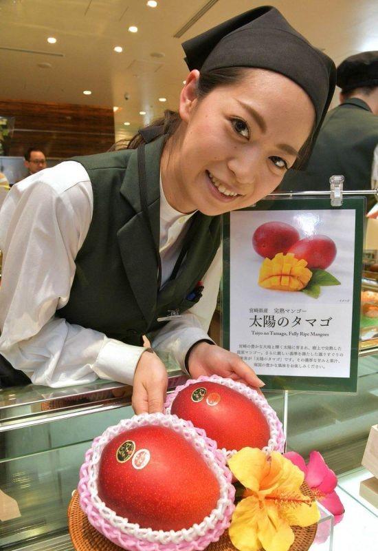 """Сколько может стоить манго класса """"Премиум"""" в Японии (3 фото)"""