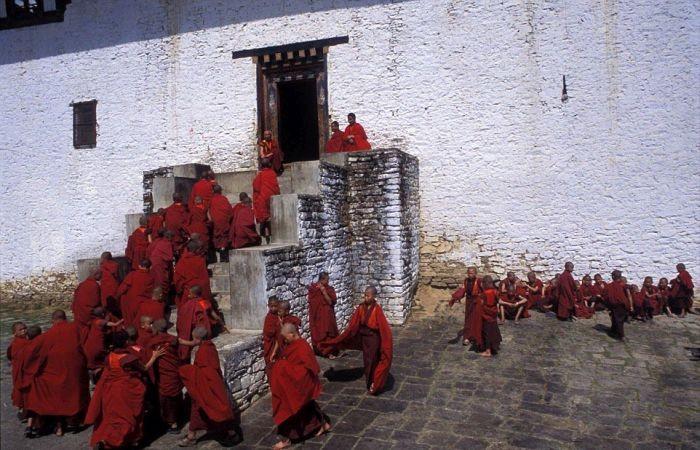 Величие буддизма в фотографиях Джереми Хорнера (15 фото)