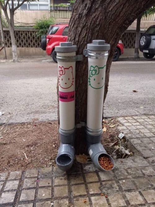Уличные кормушки и поилки для кошек в сирийском Дамаске (4 фото)