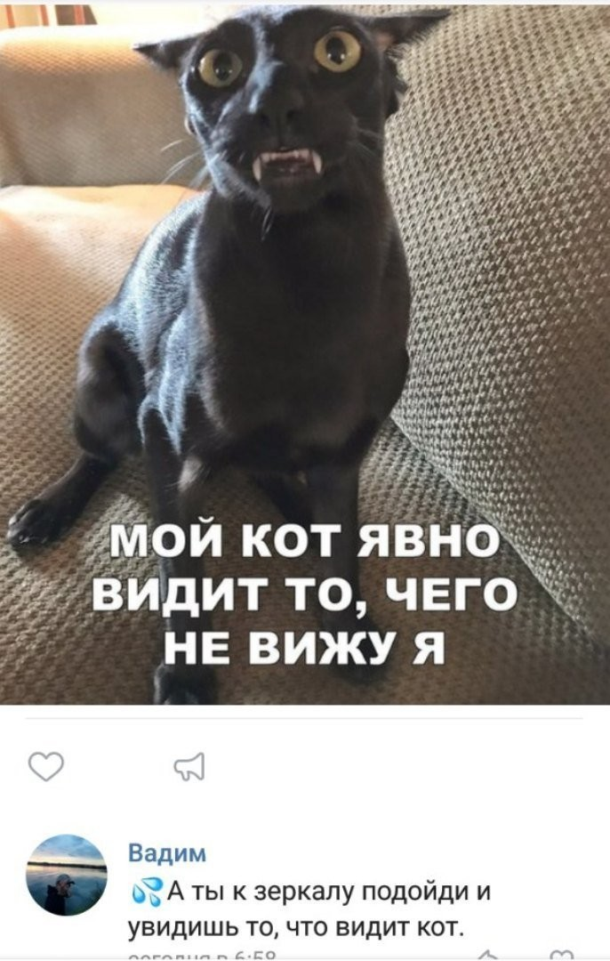 Смешные комментарии из социальных сетей (38 фото)