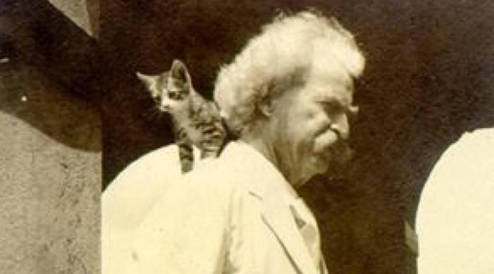 Кот до добра не доведет: самые безумные кошатники в истории (8 фото)