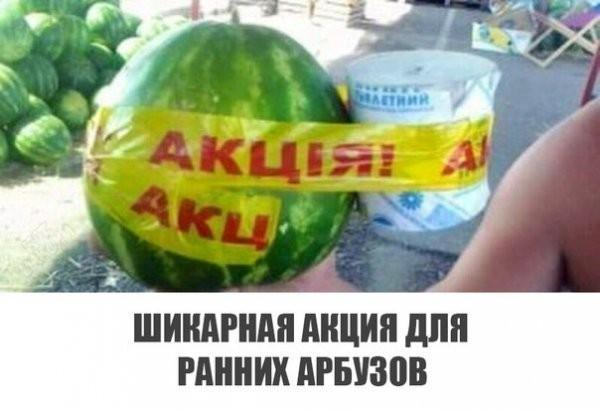 Смешные картинки с надписями (41 фото)
