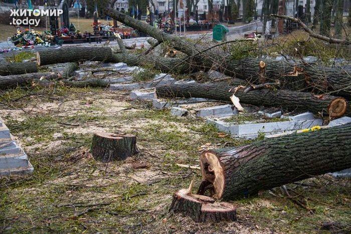 Работники ЖКХ, разрушили надгробия погибших в ВОВ солдат (10 фото)